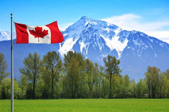 Aluguel de Carros no Canadá e México2