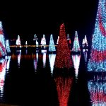 SeaWorld apresenta celebração de Natal e anuncia novo evento para o Dia de Reis